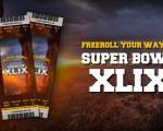 NFL_SuperbowlFreeroll_PromoPage_24